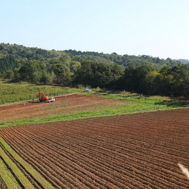 有機JAS認証の農場
