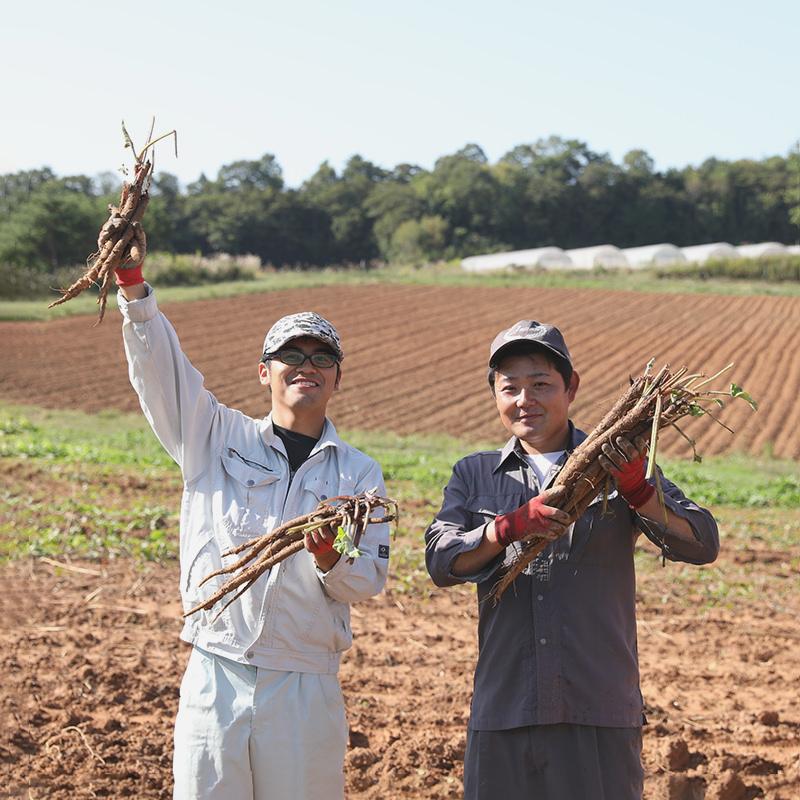 寺岡有機農場