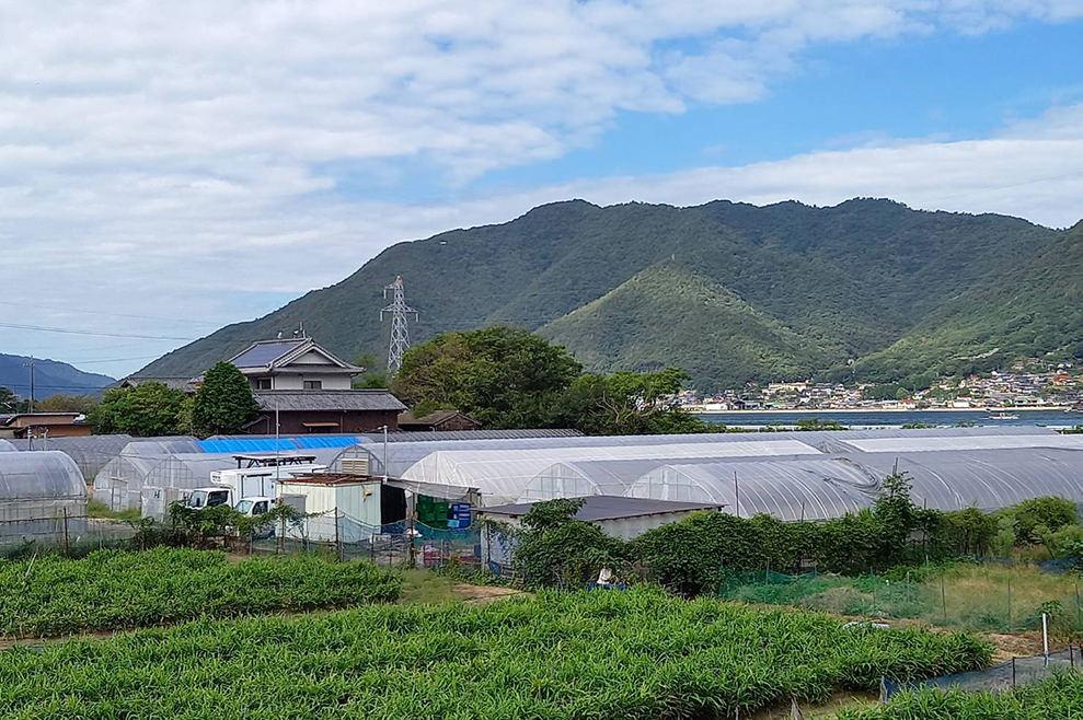岩子島農場