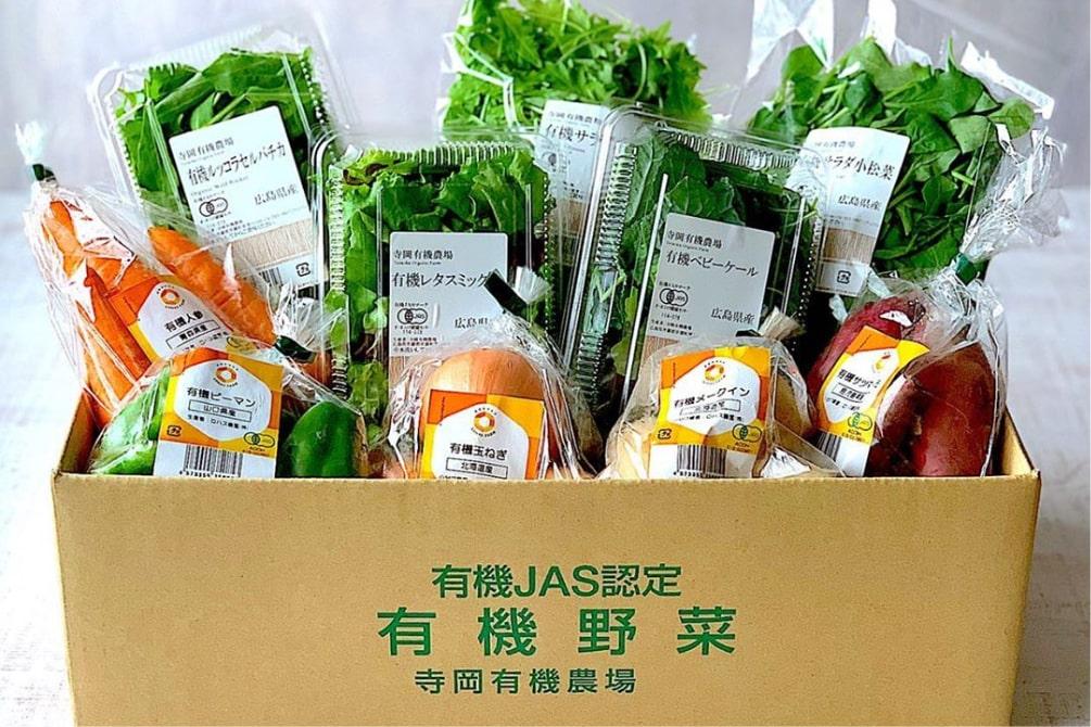 旬の有機野菜BOX