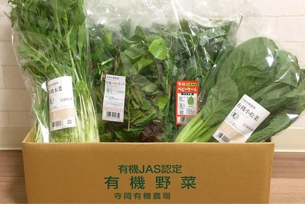 有機野菜スムージーBOX