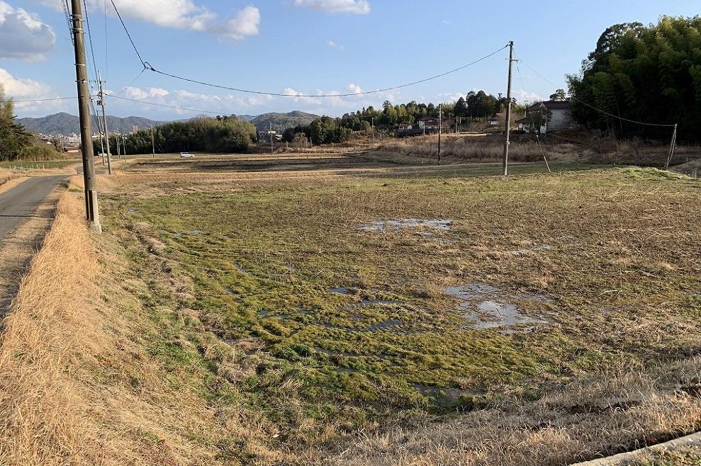 東広島農場|寺岡有機醸造