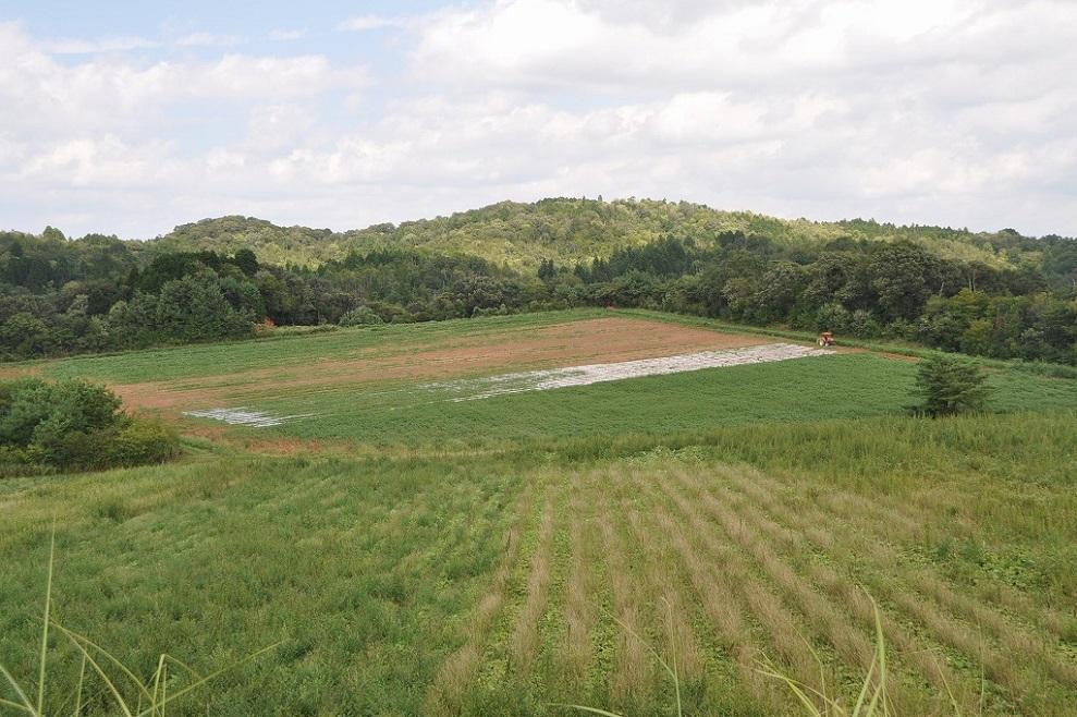 世羅農場|寺岡有機醸造