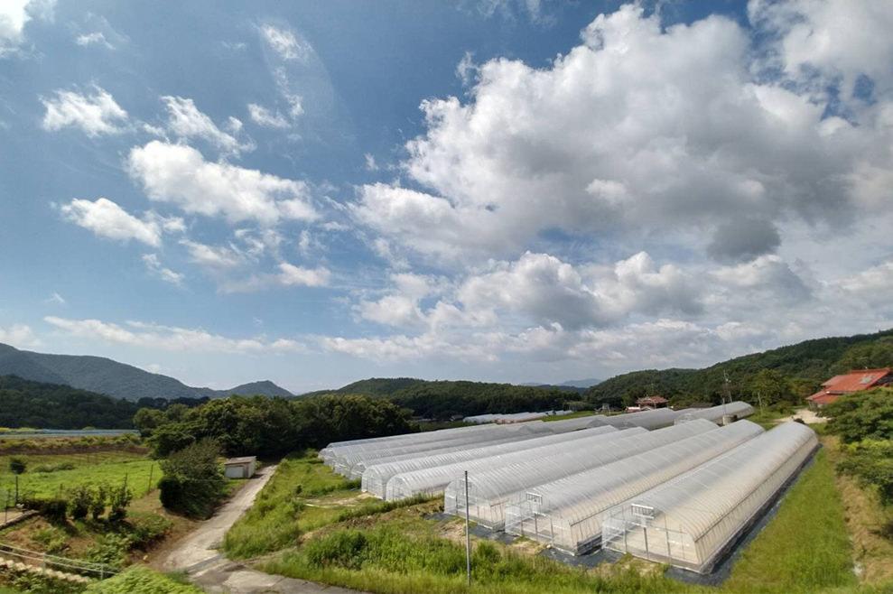 高坂農場|寺岡有機醸造